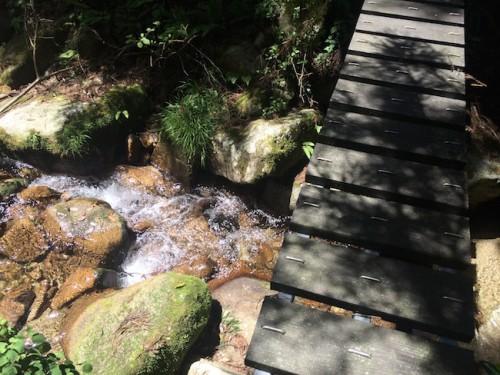 hike log bridges,be careful not to fall!