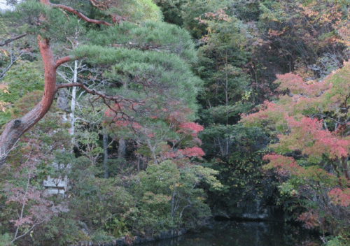 Oya-ji temple in autumn leaves (momiji)