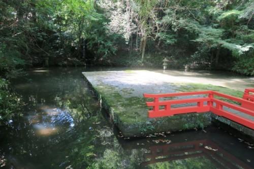 this is a bridged lotus pond