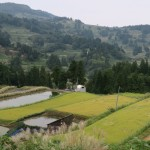 A Journey from Tokyo to the Japanese spirit in the heart of Yamakoshi