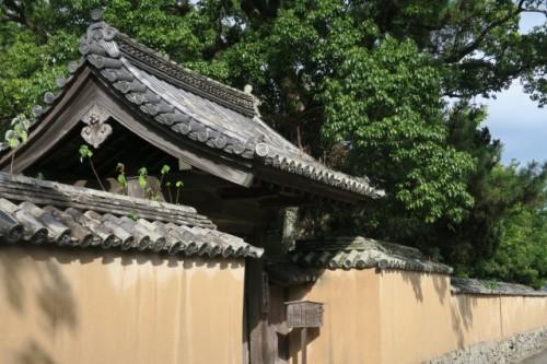 kitsuki castle promise you historical understanding of Japanese life