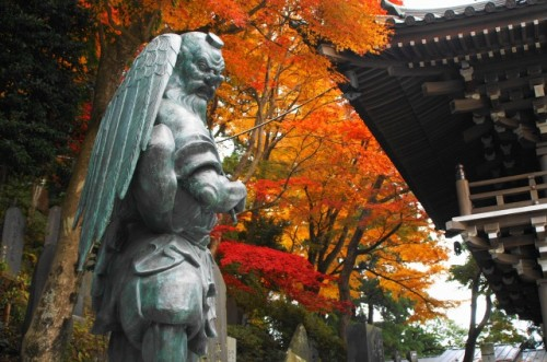Mt Takao is in Tokyo where is also famous for autumn leaves!