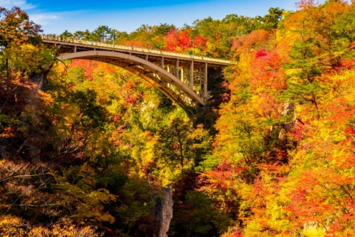 narukokyo gorge in miyagi prefecture is famous for autumn leaves