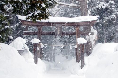 Kosuge Shrine Winter