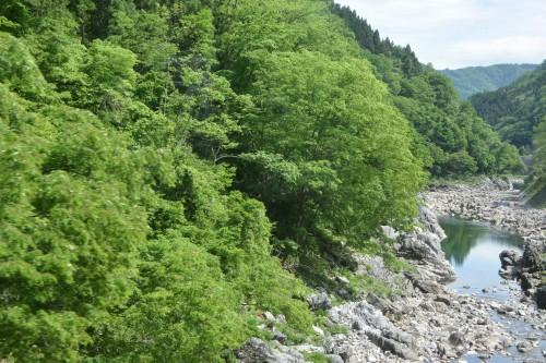 The view from Wide View Hida which goes to Takayama and Hida Furukawa.