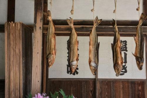 Drying Salmon in Kikkawa Salmon Shop