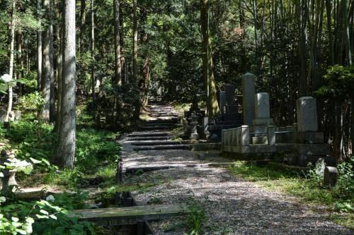 Kotokuji Temple Pathway