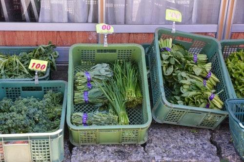 Garden Vegetables at Murakami's Market
