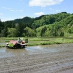 Murakami : Experience the Rice Plantation and Stay with Farmers in Japan
