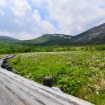 Walking in the Marshland at Mount Azuma