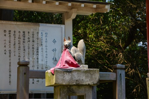 Inari statue at Yutoku Inari Shrine,One of the Three Largest Shrines Dedicated to Inari in Japan.