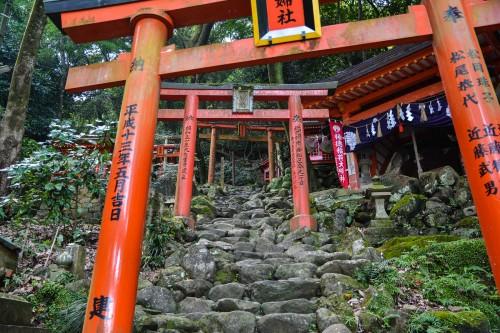 The pass under the red torii, Yutoku inari shrine, Saga, Kyushu.