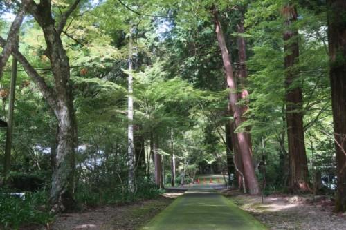 Oyada Shrine, Mino city, Gifu, Japan