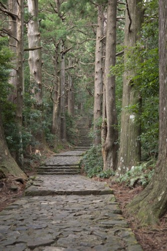 Kamano Kodo - A Pilgrimage Trail Designated as a UNESCO World Heritage Site, Japan.