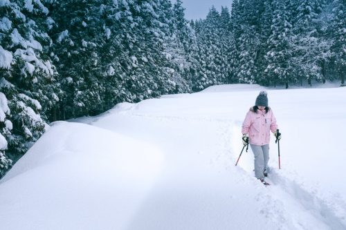 Rural Winter Snow Shoeing Experience in Takane Village