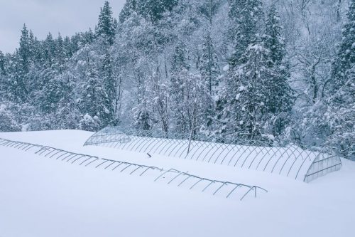 Takane Winter Produce and Greenhouses