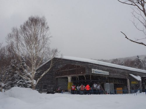 Schneefall in Shiga Kogen