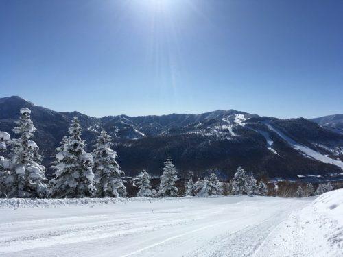Garantierte Sensationen im Skigebiet Shiga Kogen - 2,5 Stunden von Tokio entfernt