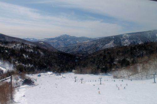 Staying at the Manza Prince Hotel and enjoy skiing.