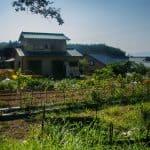 Experience Japan's Green Tourism in Kyushu: A farm Stay Near Usuki