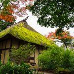 Among the Ancients: Exploring the Sacred Places of Iiyama and Kosuge, Nagano