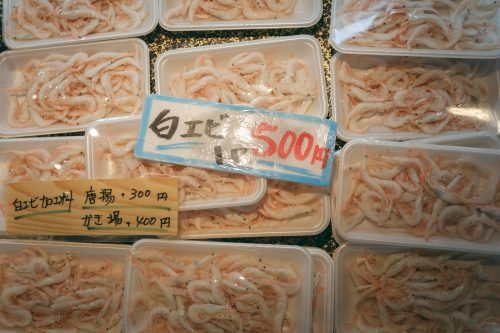 White prawns from Toyama Prefecture sold at the fish market.
