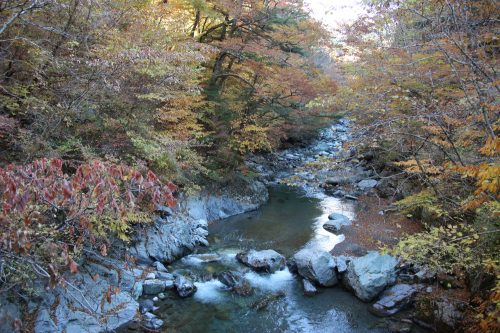 View of the Iya Valley in Tokushima, Eastern Shikoku.