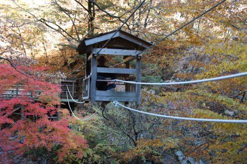 Wild Monkey Bridge at Iya Valley, Tokushima.