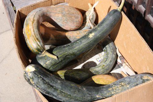 Vegetables for sale in Udatsu, Tokushima.