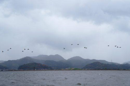 Cruise on Nakaumi Lake in Yonago, San'in Region, Tottori, Japan