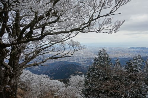 Oyama: when hiking rhymes with spirituality just 90 minutes by train