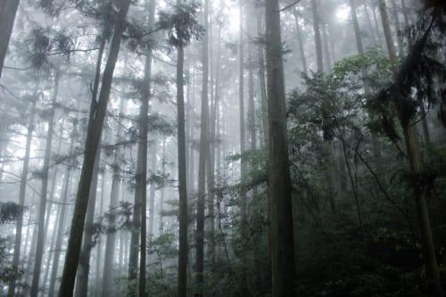 Climbing Mount Omoto in Oita, Kyushu