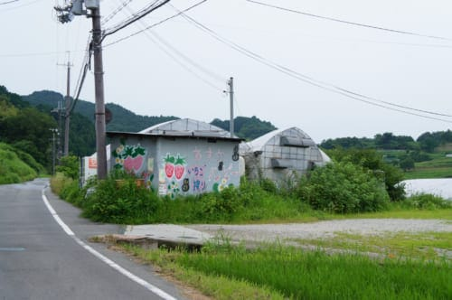 Greenhouses where strawberries are grown on the side of a road in Asuka