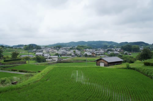 A view of Asuka village, Nara: rice fields and traditional houses.