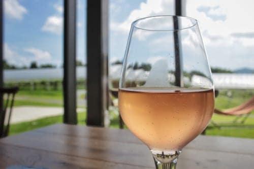 Kikuka: Glass of wine