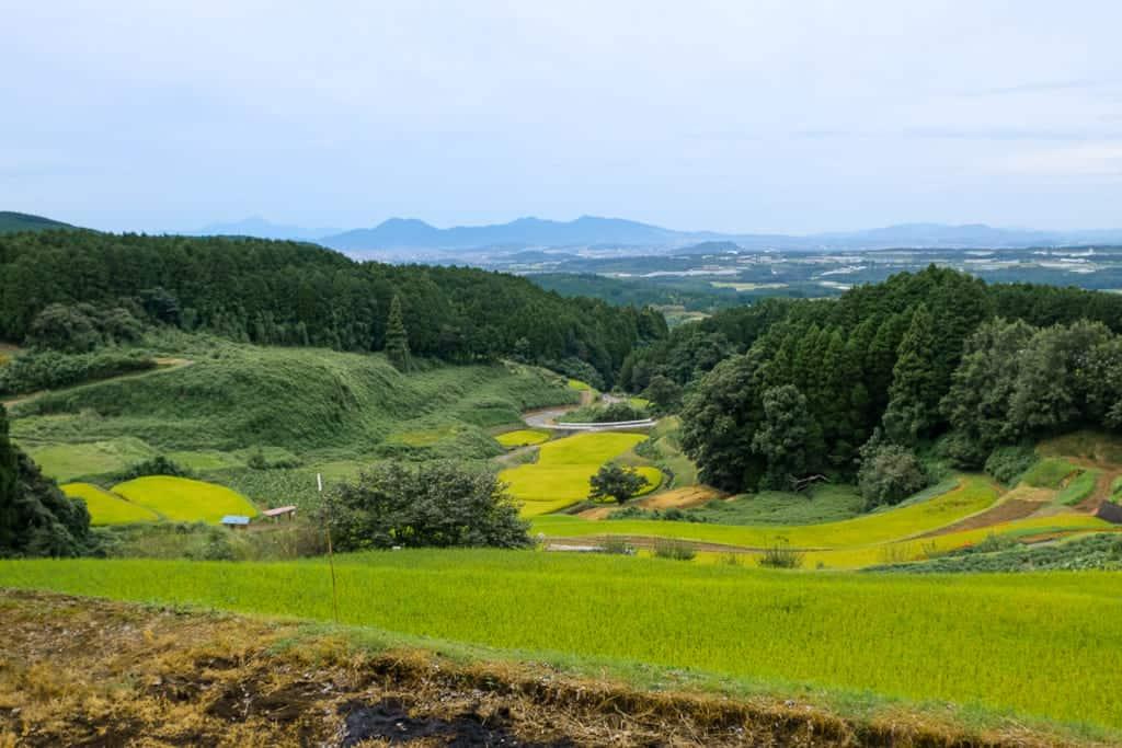 Terraced rice-fields by Shiraitonotaki Falls in Nishihara, Kumamoto