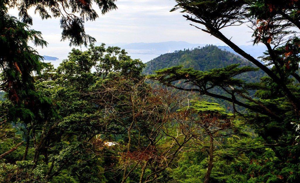 Der Blick auf den Wald und die Küste der Inseln im Seto Binnenmeer.