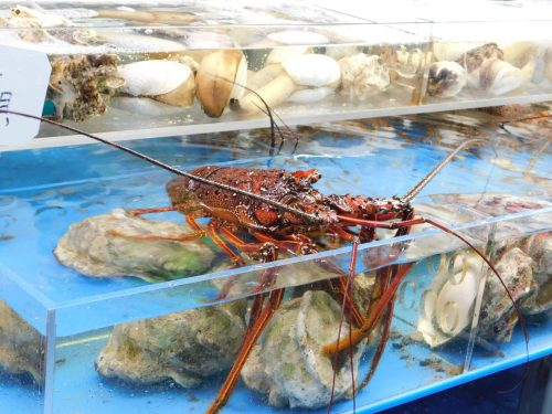 Frische Meerestiere auf der Kokusai-dori.