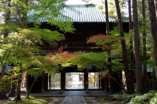 Das Sonmon-Holztor des Sogenji Tempel, Okayama, Japan.