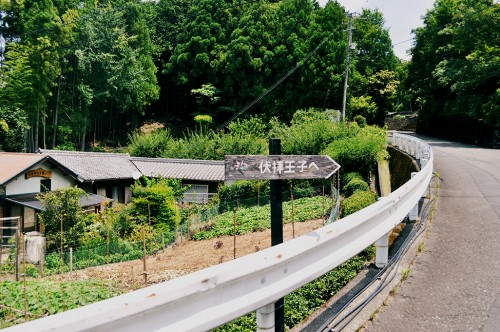 Ruta de peregrinación Kumano Kodo, en Wakayama.