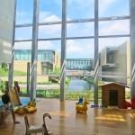Dejima Kodomo Kaikan: arquitectura al servicio de los niños
