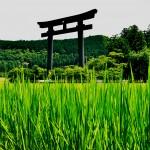 Hongu Taisha, uno de los tres grandes santuarios de Kumano