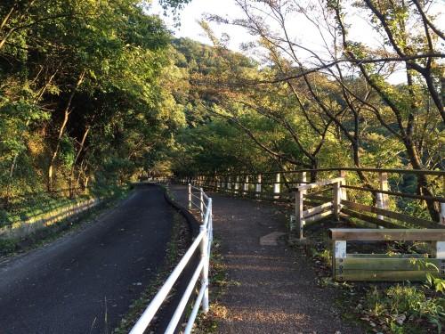 Senderos para subir al monte Ikoma, en Japón