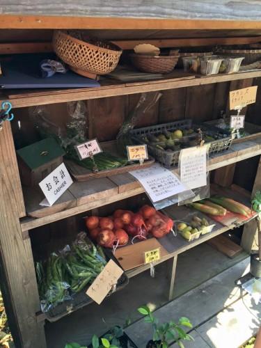 Tienda de vegetales orgánicos a la venta en el monte Ikoma
