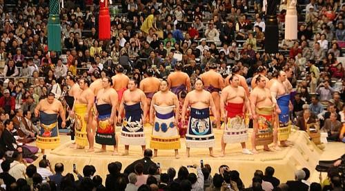 Torneo de lucha de sumo en Japón