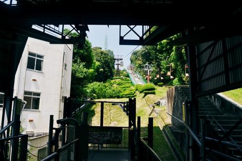 telesilla castillo matsuyama