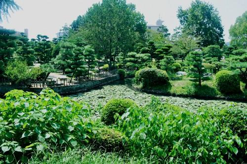 jardín castillo matsuyama