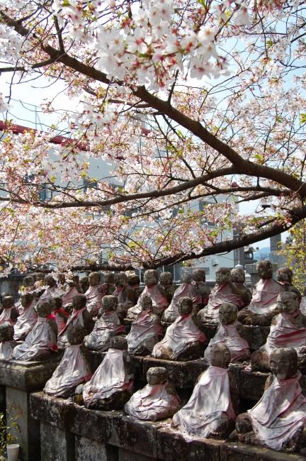Monjes de piedra y cerezos en flor en el jardín del templo Enmeiji de Nagasaki