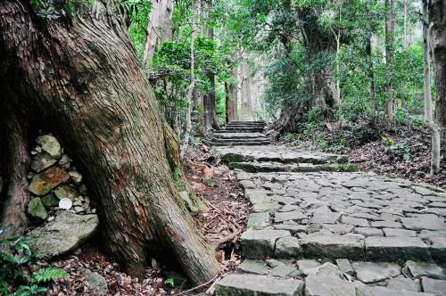 La ruta Daimon-zaka de 600 metros de longitud le dejará sin aliento.