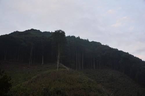 Montañas de Oita.